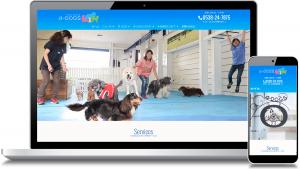 磐田市のトリミングサロン4-DOGS